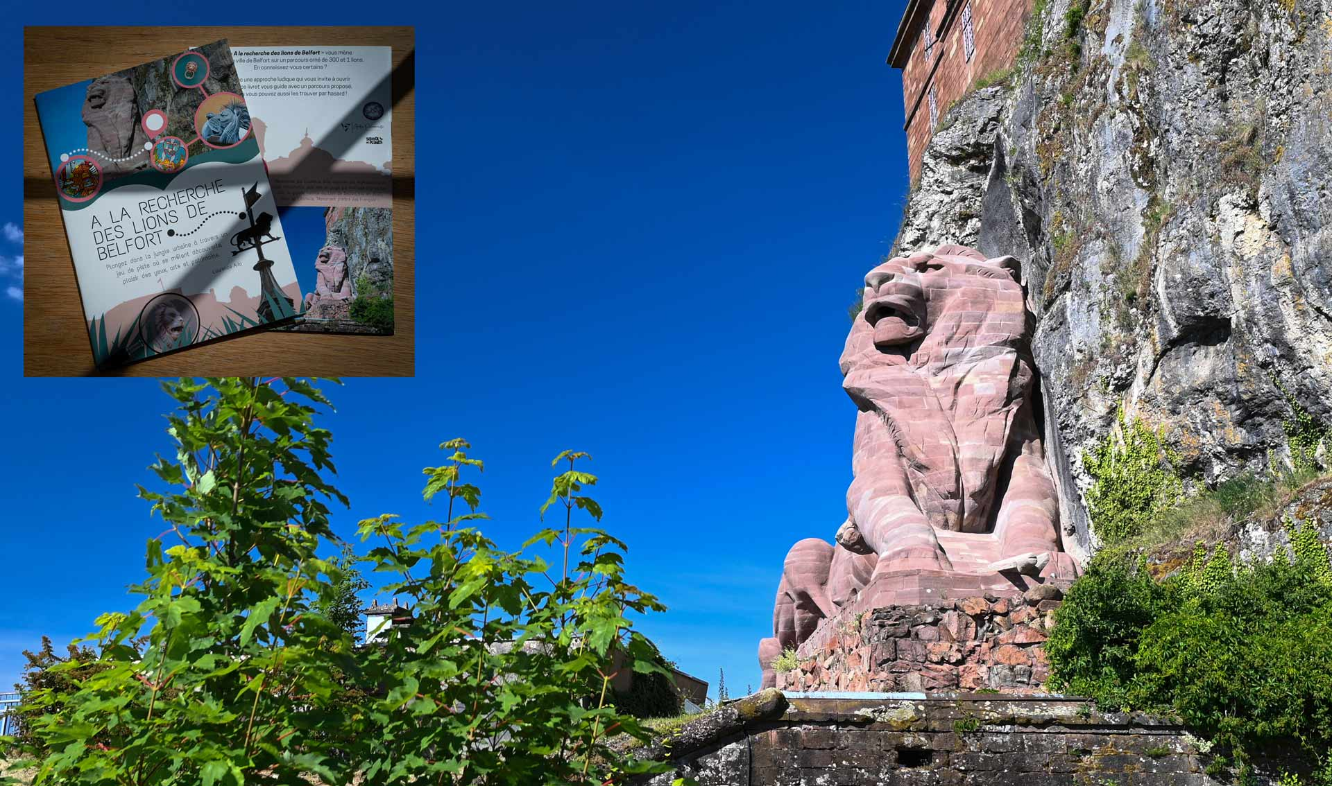 Répertoire de 80 photographies de lions repérés sur les bâtiments de Belfort